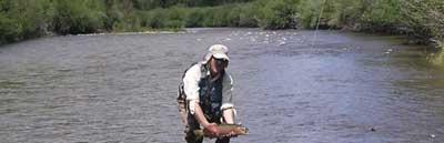 colorado river fly fishing